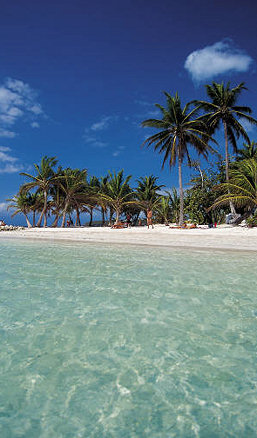 St Croix Is Ringed By Beaches Of All Shapes And Sizes Some Are Long White Sand Stretches Others Small Patches Shaded Low Sea Grape Trees